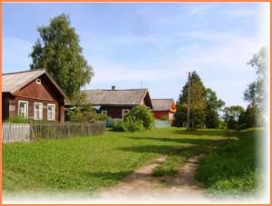 кедровый сад Трифона Плотникова
